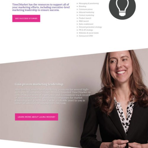 T2M B2B Marketing Website Design